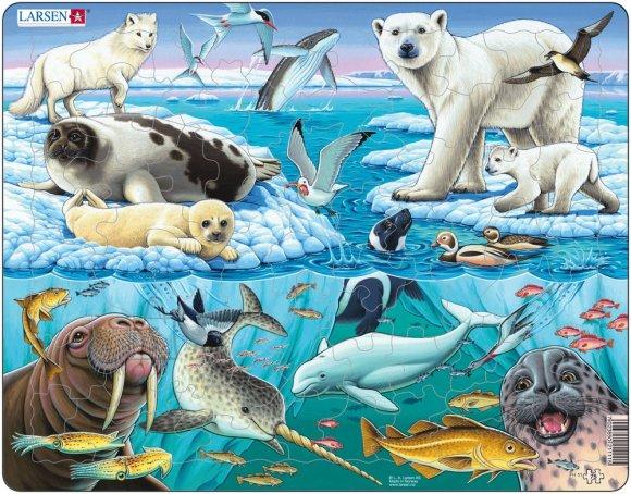 Larsen pusle Arktika 75 tk