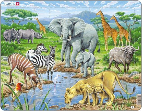 Larsen pusle Aafrika savann 65 tk