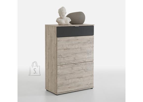 FMD Furniture kummut Combi 1