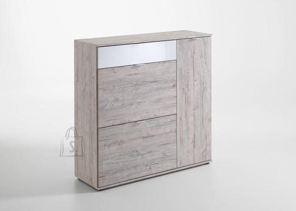 FMD Furniture kummut Combi 2