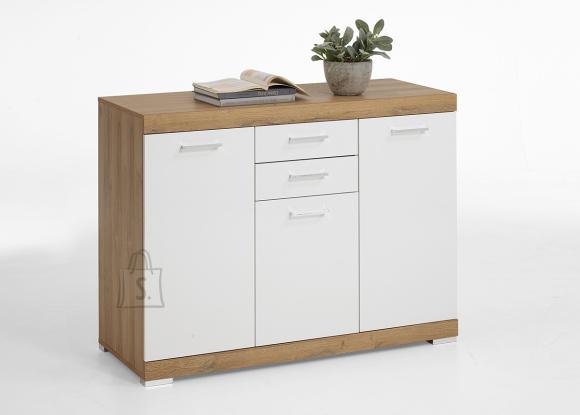 FMD Furniture kummut Bristol 3 XL