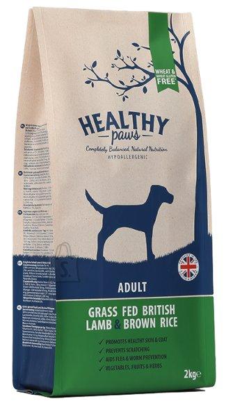 Healthy Paws koeratoit Briti Lambaliha & Pruuni Riisiga 2kg
