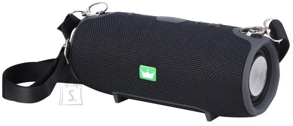 ForMe Bluetooth Kõlar FS-137