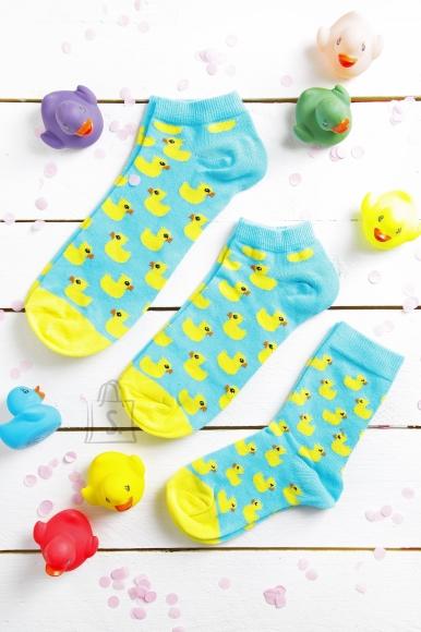 Sokisahtel PARDIRALLI madalate sokkidega kinkekarp kogu perele 3 sokipaariga 23-26