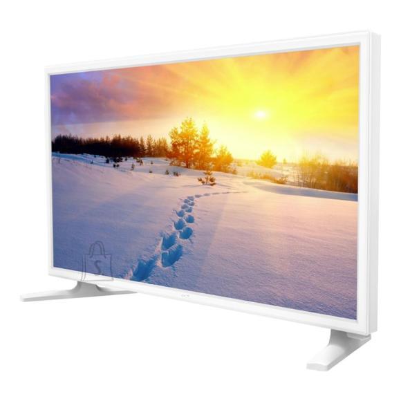 TCL F22B3914R 22'' Full HD LED LCD-teler