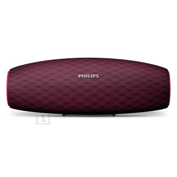 Philips juhtmevaba kõlar