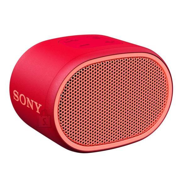 Sony XB01 kaasaskantav kõlar