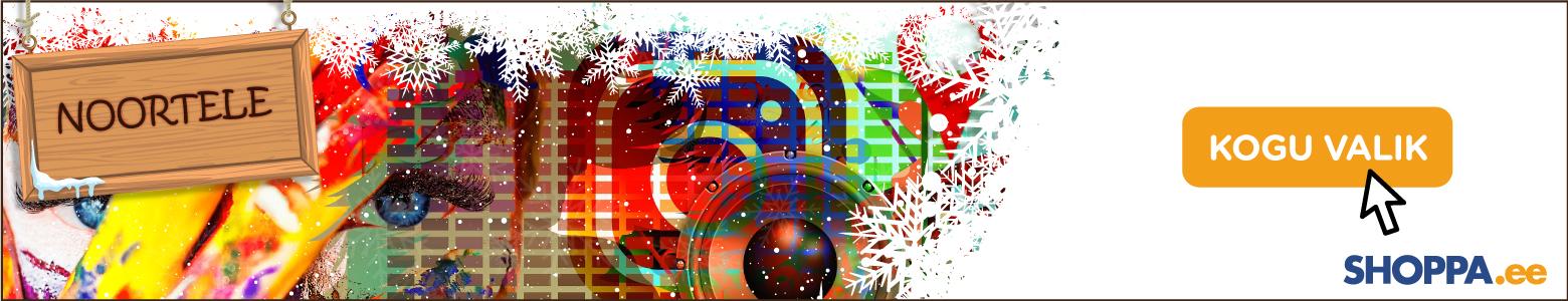 Jõulukingid noorele