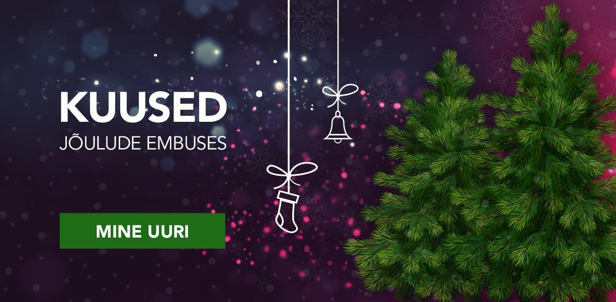 Kuused - Jõulude embuses